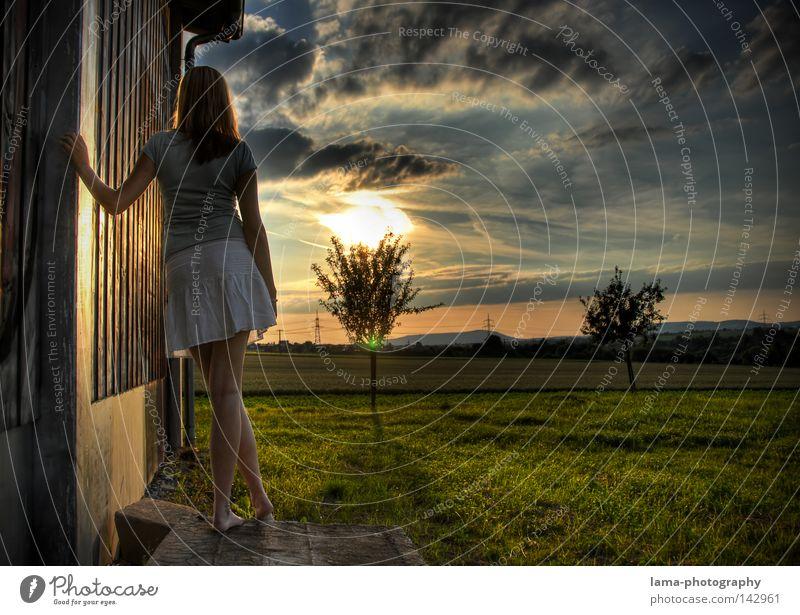 Southern Valley Frau Himmel Baum Sonne Sommer Haus Wolken Einsamkeit Ferne Wiese Wand träumen Traurigkeit Denken Landschaft Stimmung