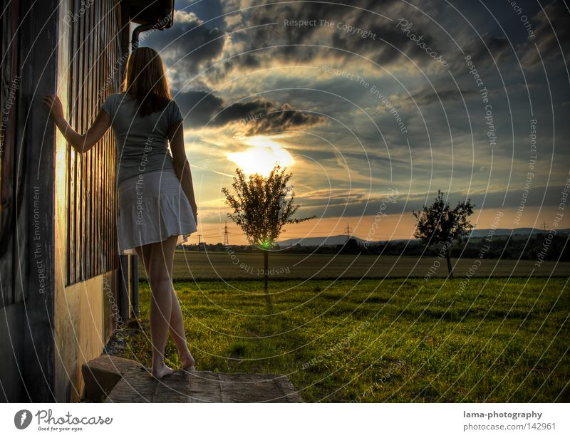 Southern Valley Hoffnung Wunsch Erwartung warten stehen Geistesabwesend träumen Tagtraum Denken Gedanke Einsamkeit Himmel Sonne blenden Sonnenuntergang Wolken