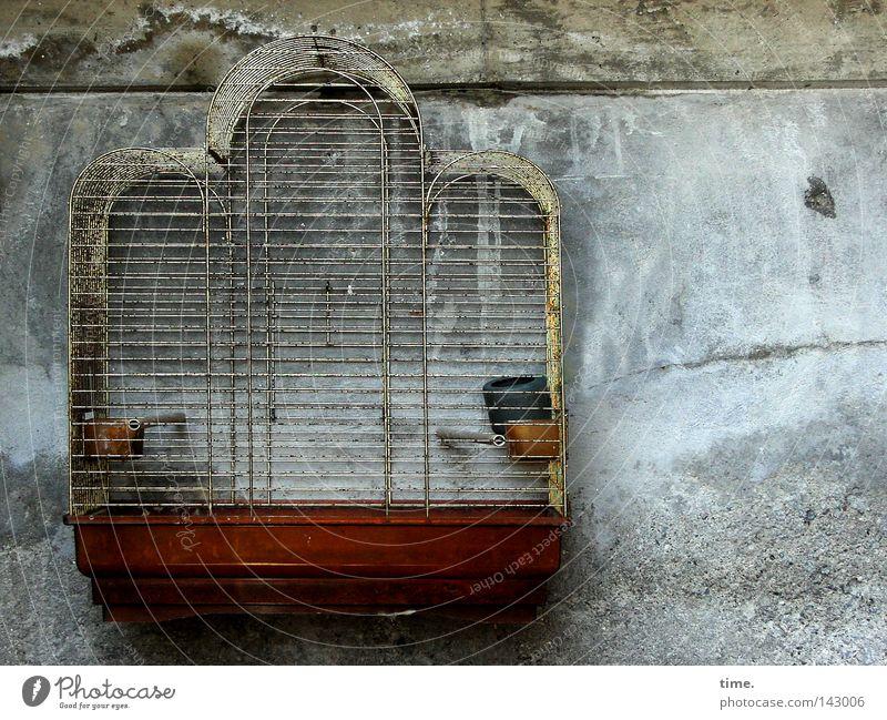 Es gibt kein richtiges Leben im falschen. Wand Freiheit Luft Metall Fassade gefangen Kiste Stab Blech Gitter Moral Käfig Folter unnatürlich Tierhaltung Vogelkäfig