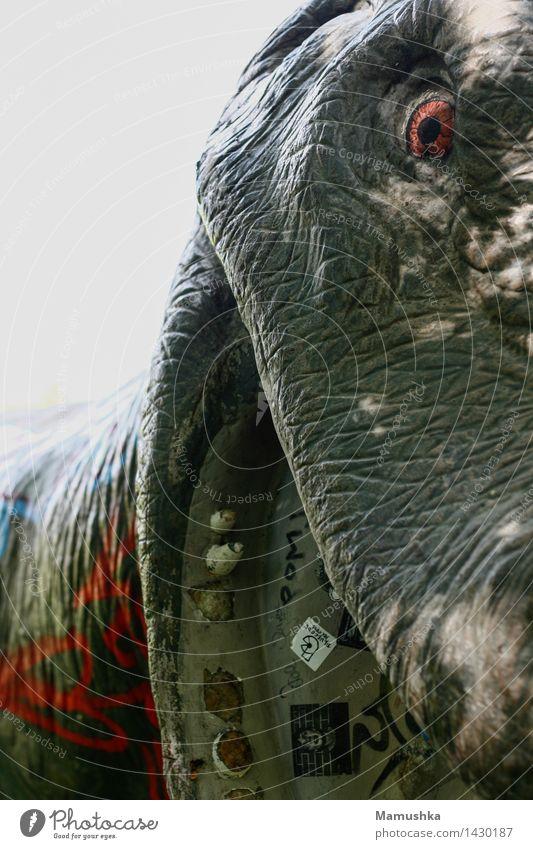 Dino Freizeit & Hobby Vergnügungspark Kunst Kunstwerk Tier Wildtier Totes Tier Dinosaurier 1 Aggression alt außergewöhnlich bedrohlich dreckig exotisch gruselig