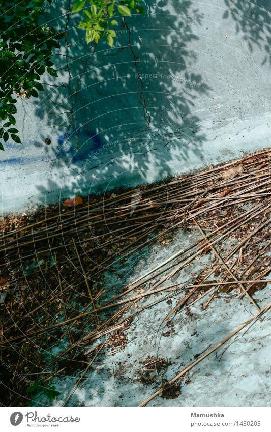 Wasserrutsche Freizeit & Hobby Ferien & Urlaub & Reisen Ausflug Abenteuer Sommer Wassersport Vergnügungspark Umwelt Natur Pflanze Sträucher Blatt Grünpflanze