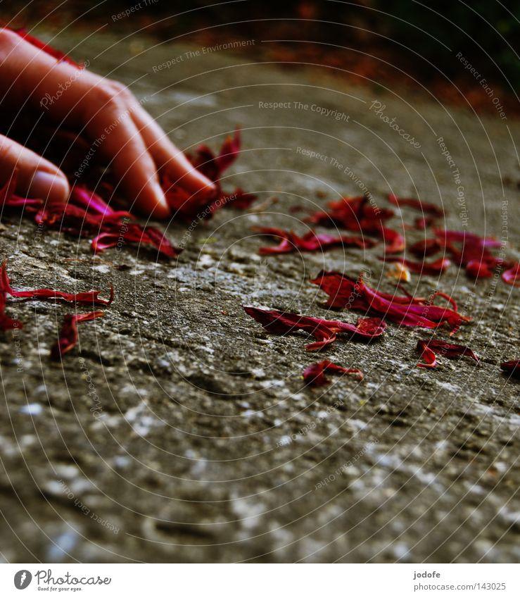 Paradoxe Stille Mensch Hand Sommer Einsamkeit ruhig Tod Gefühle Frühling grau Stein träumen liegen Haut Finger Bodenbelag Romantik