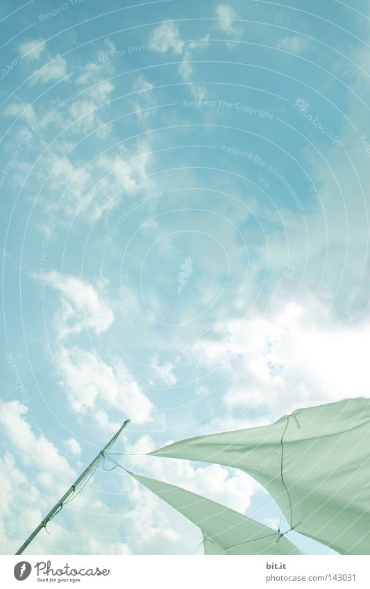 FESTHALTEN Himmel blau weiß Sonne Ferien & Urlaub & Reisen Sommer Wolken oben Wetter Horizont Hintergrundbild Wind fliegen hoch Seil Sicherheit