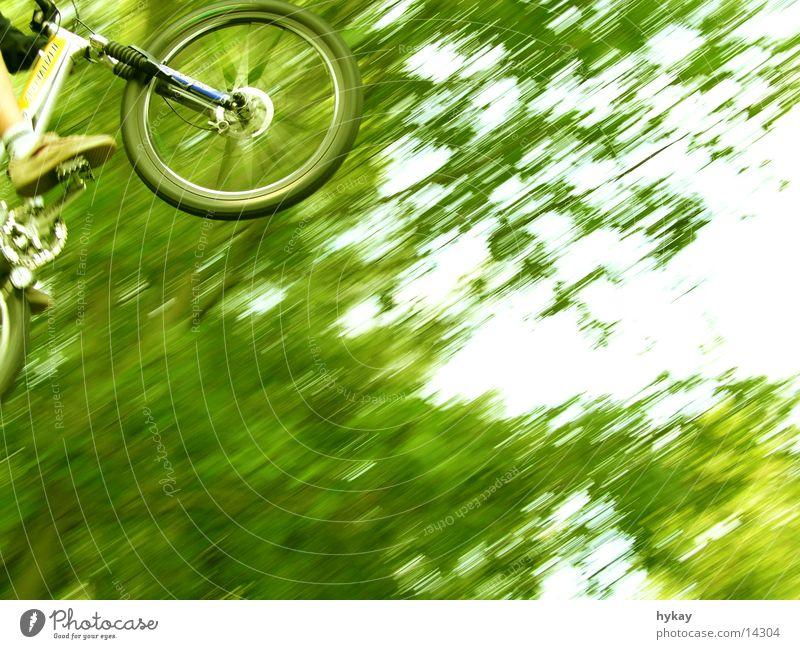 flying high Natur Baum grün Ferne springen Bewegung Fahrrad hoch Geschwindigkeit Freestyle Mountainbike Rampe Extremsport