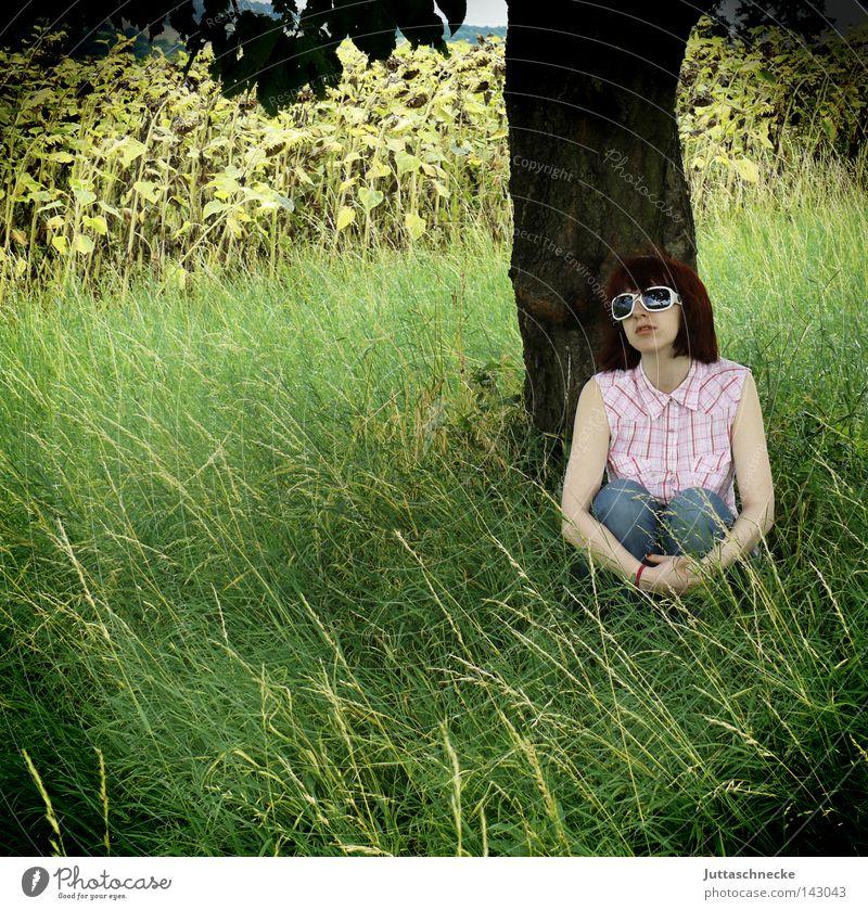 A Saucerful of Secrets Frau Natur Baum Sommer Tier Wiese Gras träumen Denken Feld sitzen Brille Romantik Frieden Gedanke Sonnenbrille