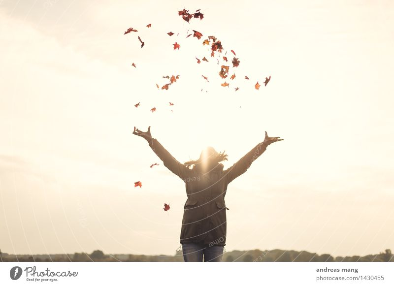#311 / Herbstgefühle Natur Jugendliche Junge Frau Blatt Freude Ferne 18-30 Jahre Erwachsene Umwelt Leben Bewegung Spielen Glück Freiheit fliegen