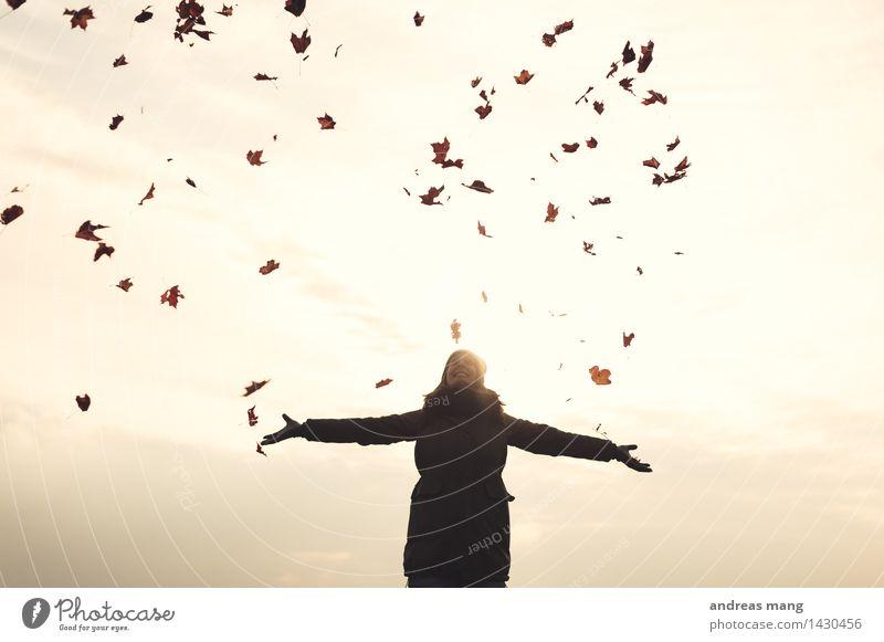 #313 / Herbst Frau Natur Jugendliche Junge Frau Erholung Blatt Freude Erwachsene Umwelt Leben Glück fliegen frei Fröhlichkeit genießen
