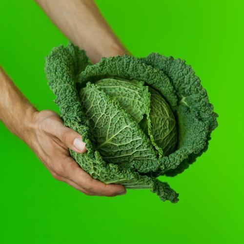 Grünzeug Mensch Natur grün Farbe Hand Gesunde Ernährung Gesundheit Lebensmittel frisch genießen Kochen & Garen & Backen Idee kaufen festhalten Gemüse