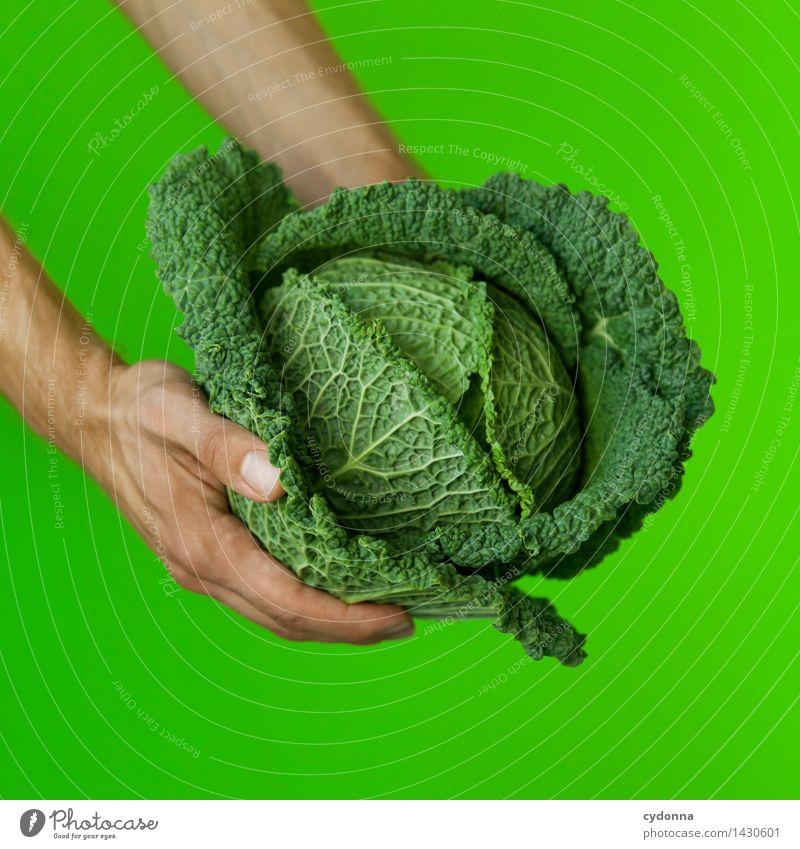 Grünzeug Mensch Natur grün Farbe Hand Gesunde Ernährung Gesundheit Lebensmittel frisch Ernährung genießen Kochen & Garen & Backen Idee kaufen festhalten Gemüse