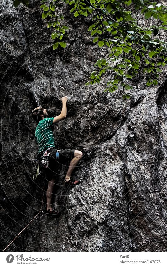 hang on Mann Baum grün blau Blatt Wolken Sport Spielen oben Berge u. Gebirge Stein Wärme Beine Arme Seil Felsen