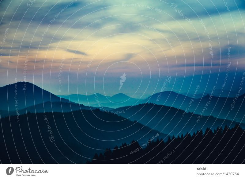 märchenhaft Natur Landschaft Pflanze Himmel Wolken Horizont Sonnenaufgang Sonnenuntergang Schönes Wetter Baum Wald Hügel außergewöhnlich Ferne frei
