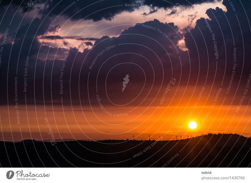 Bis zum Horizont Erneuerbare Energie Windkraftanlage Natur Landschaft Himmel Wolken Wetter Schönes Wetter Baum Wald Hügel Unendlichkeit Ferne Idylle Beleuchtung