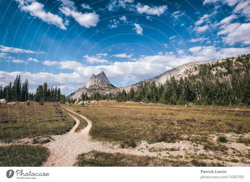 Road to Nowhere Himmel Natur Ferien & Urlaub & Reisen Pflanze Sommer Baum Landschaft Wolken Ferne Wald Berge u. Gebirge Umwelt Freiheit Wetter Zufriedenheit