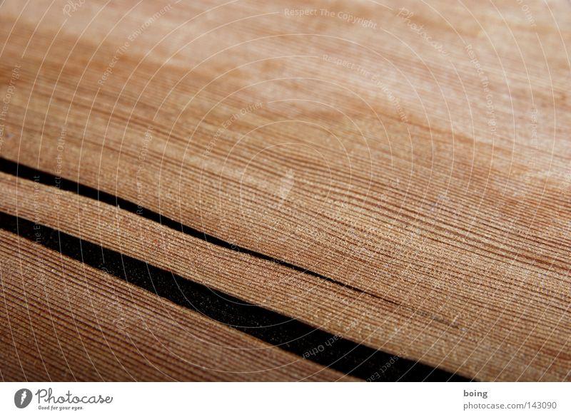 Holz hat seinen eigenen Kopf Riss Spalte kaputt Kraft Leben tief auslaufen 2 tektonisch Möbel Wut Ärger Freizeit & Hobby Handwerk auseinandergehen Beginn Ende