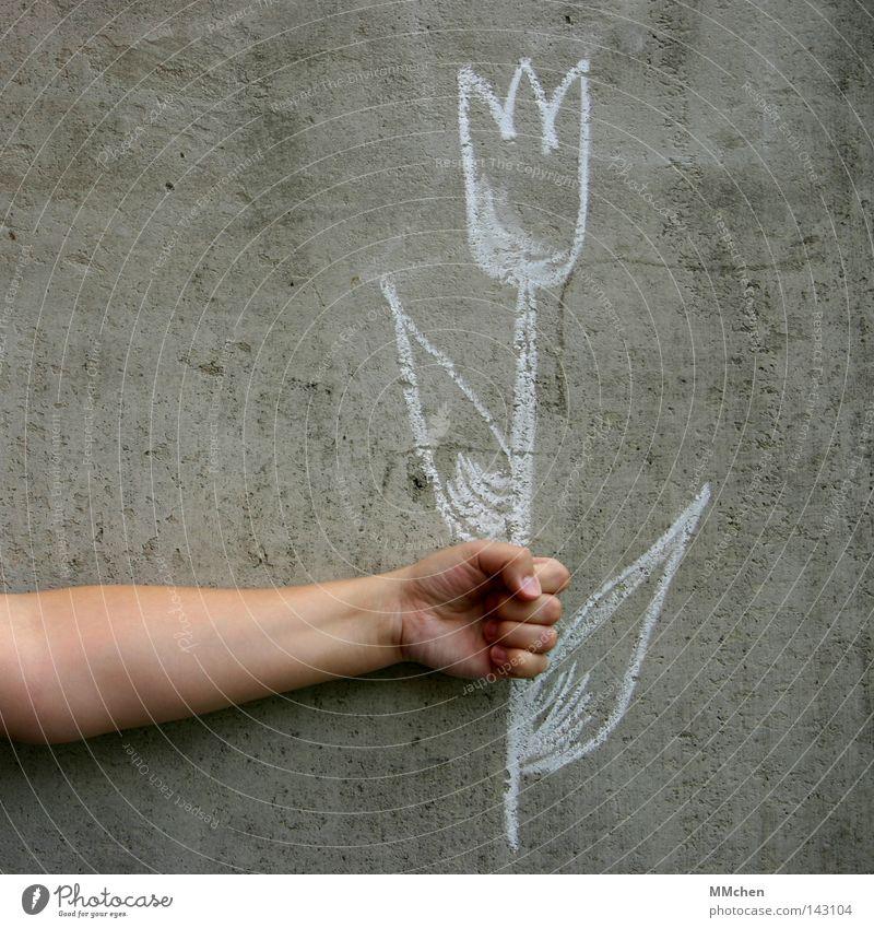 imaginär Blume Tulpe Amsterdam Kreide Wand Beton gezeichnet Gemälde zeichnen Arme greifen festhalten Hand Finger Geburtstag Malerei u. Zeichnungen