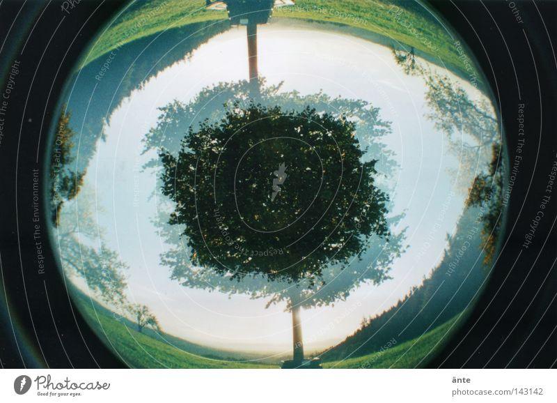 fish-EYE Baum Landschaft Bank Fischauge drehen Doppelbelichtung Symmetrie Lomografie Irritation Linse Verzerrung Pupille schwindelig