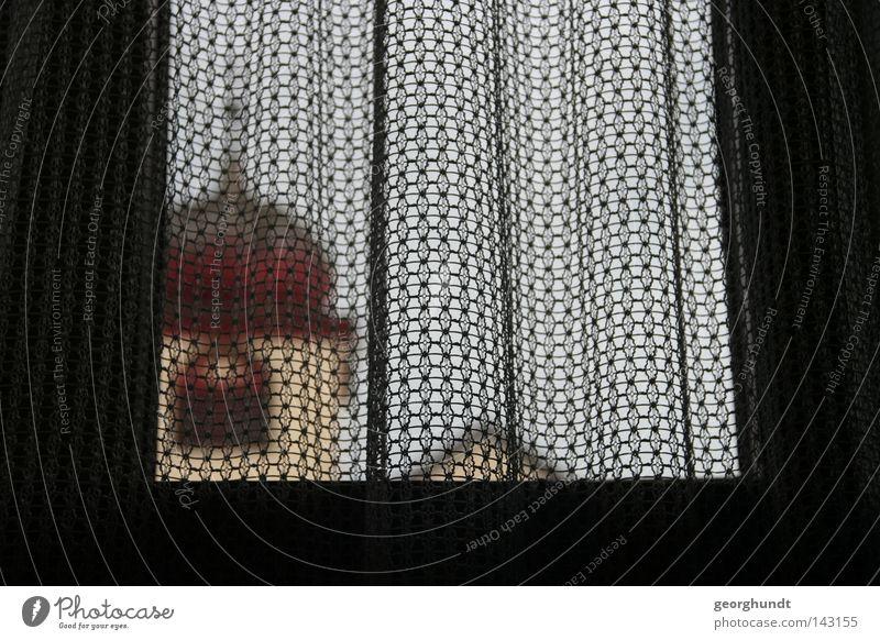 Gardinenkirche Religion & Glaube Kirche Kapelle Dorfkirche Vorhang verdeckt verdunkeln verheimlichen ausstellen erstarren Misstrauen Schatten Bildausschnitt