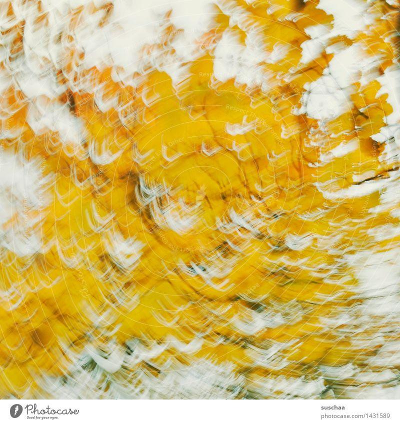 wischhhhhh .. und weg Baum Blatt gelb Herbst Bewegung Kunst Dynamik rotieren
