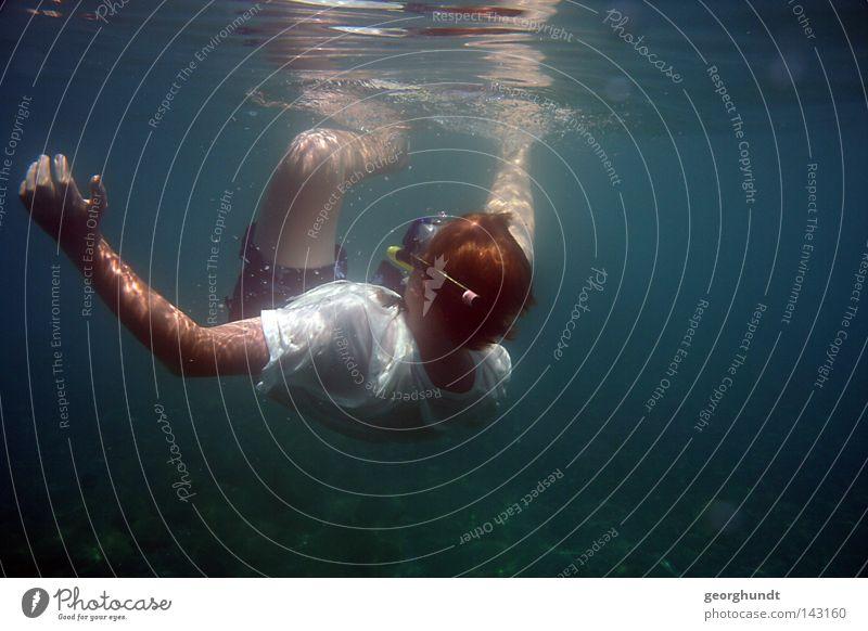 swelldiving 1 Wasser Unterwasseraufnahme tauchen Schwimmen & Baden Schweben Schnorcheln Taucher Schnorchler Meer Mittelmeer Italien Wassersport See
