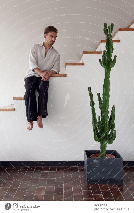 Grün isser ja, aber wo kommen da die Kugeln dran? Lifestyle Häusliches Leben Raum Mensch Junger Mann Jugendliche 18-30 Jahre Erwachsene Treppe Beratung Design