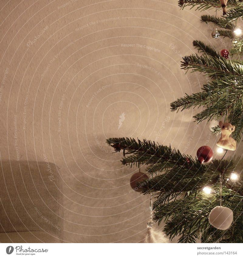 das warten auf den weihnachtsmann. Tanne Tannennadel Christbaumkugel braun grün Licht Physik weiß Schneeflocke weich Weihnachtsdekoration Schmuck Stimmung