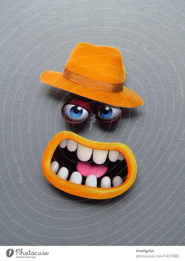 Große Schnauze weiß Gesicht Auge gelb Gefühle grau Stimmung Kommunizieren Mund Zähne Wut Hut Aggression Ärger gereizt Feindseligkeit