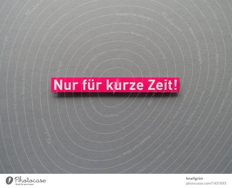 Nur für kurze Zeit! Schriftzeichen Schilder & Markierungen Kommunizieren eckig grau rosa weiß Gefühle Stimmung Neugier Erwartung planen Termin & Datum Frist