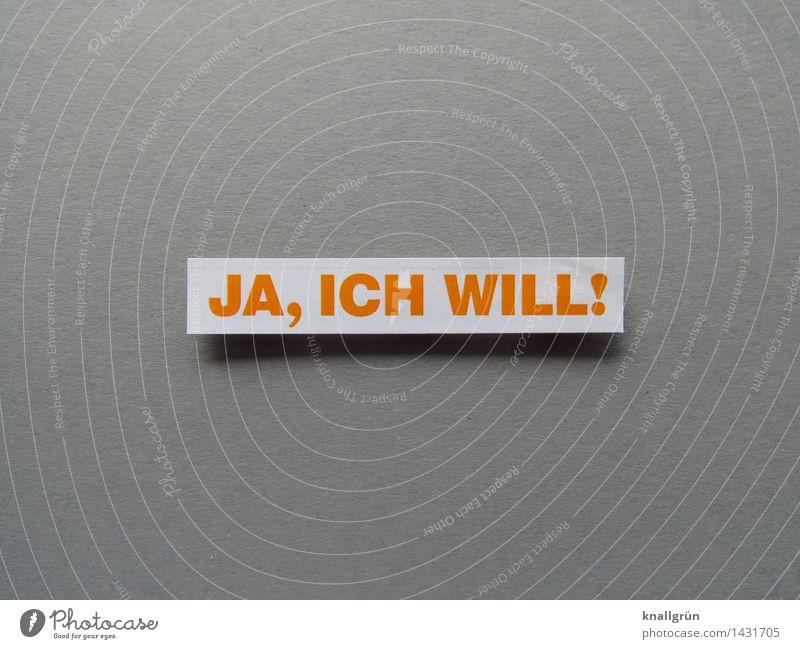 JA, ICH WILL! Schriftzeichen Schilder & Markierungen Kommunizieren eckig gelb grau weiß Gefühle Freude Glück Fröhlichkeit Zufriedenheit Lebensfreude Vorfreude