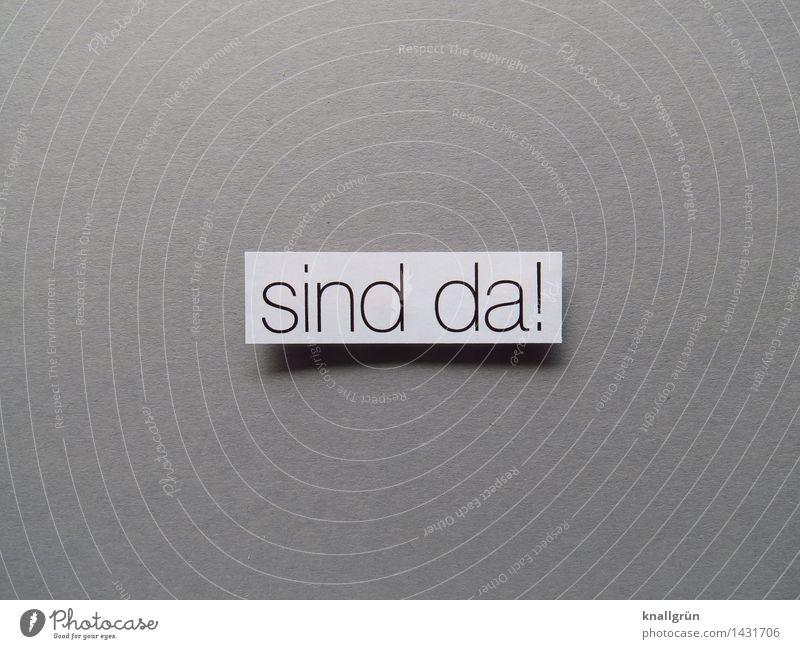 sind da! Schriftzeichen Schilder & Markierungen Kommunizieren eckig grau schwarz weiß Gefühle Zufriedenheit Beginn entdecken Erwartung Leben kommen Farbfoto