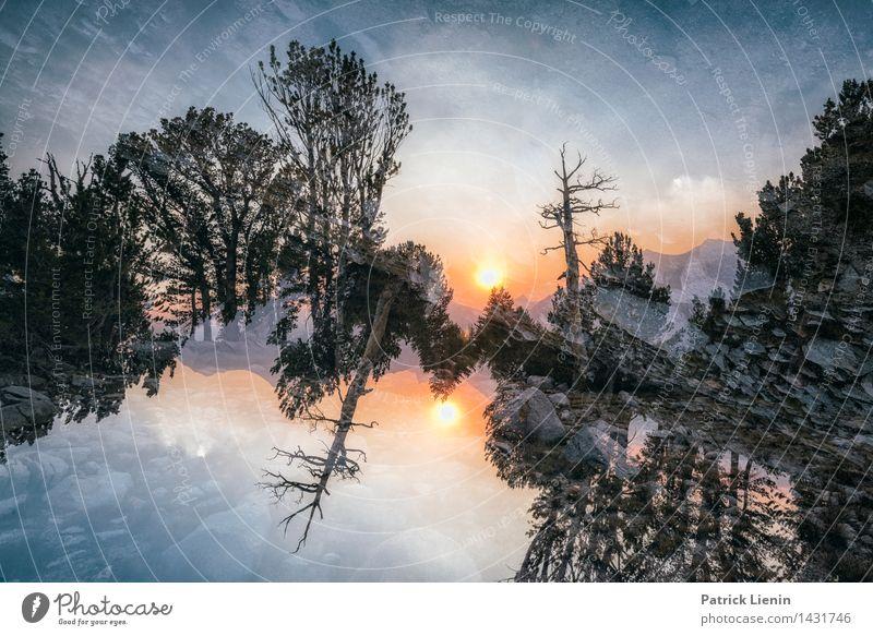 Dreamscape (2) Wohlgefühl Zufriedenheit Sinnesorgane Erholung Ferien & Urlaub & Reisen Ausflug Abenteuer Ferne Freiheit Sommer Berge u. Gebirge Umwelt Natur