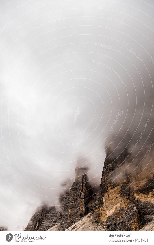 Nebel- und Bergwand Ferien & Urlaub & Reisen Tourismus Ausflug Abenteuer Ferne Freiheit Berge u. Gebirge wandern Umwelt Natur Landschaft Pflanze Sommer