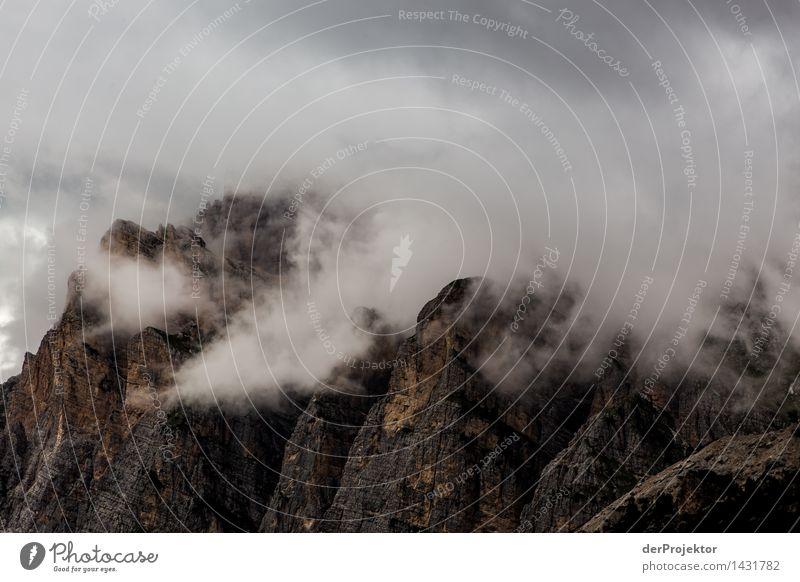 Nebelberge in den Dolomiten Natur Ferien & Urlaub & Reisen Pflanze Sommer Landschaft Ferne Berge u. Gebirge Umwelt Freiheit Felsen Tourismus wandern Abenteuer