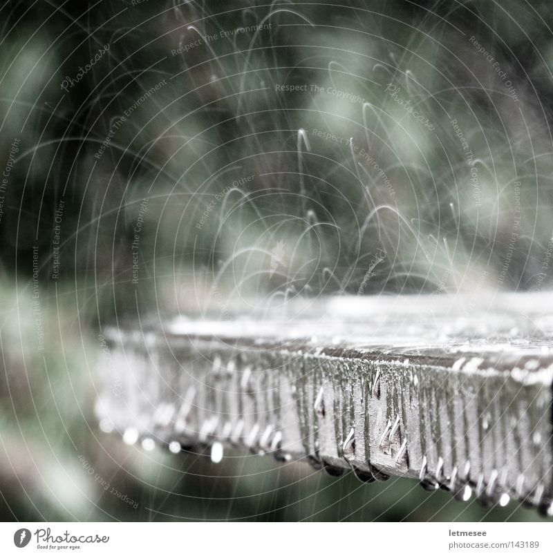 Raindrops dance Wasser Herbst Regen Brunnen Tanzen Wassertropfen Gewitter Sternschnuppe Springbrunnen