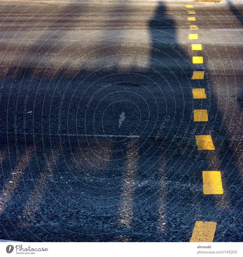 Schatten voraus Straße gelb Streifen Barriere Abend Abendsonne Physik Ampel Überqueren warten gehen stehen grau Kontrast Verkehrswege gestrichelt Abenddämmerung
