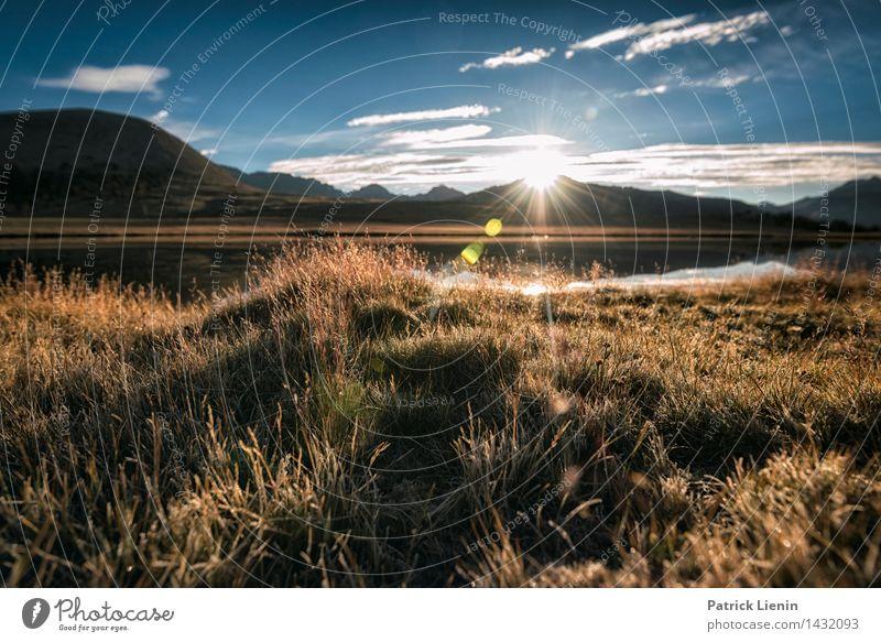 Morgenlicht Ferien & Urlaub & Reisen Pflanze Sonne Erholung Wolken Ferne Berge u. Gebirge Umwelt Leben Wiese Gras Küste Freiheit See Erde Zufriedenheit