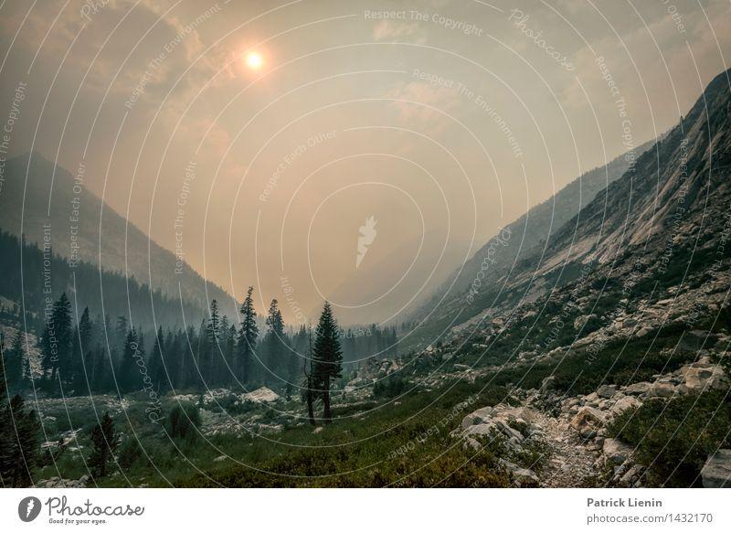 Waldbrand in Kalifornien Tourismus Ausflug Abenteuer Ferne Expedition Berge u. Gebirge wandern Umwelt Natur Urelemente Feuer Himmel Wolken Sonne Sonnenlicht