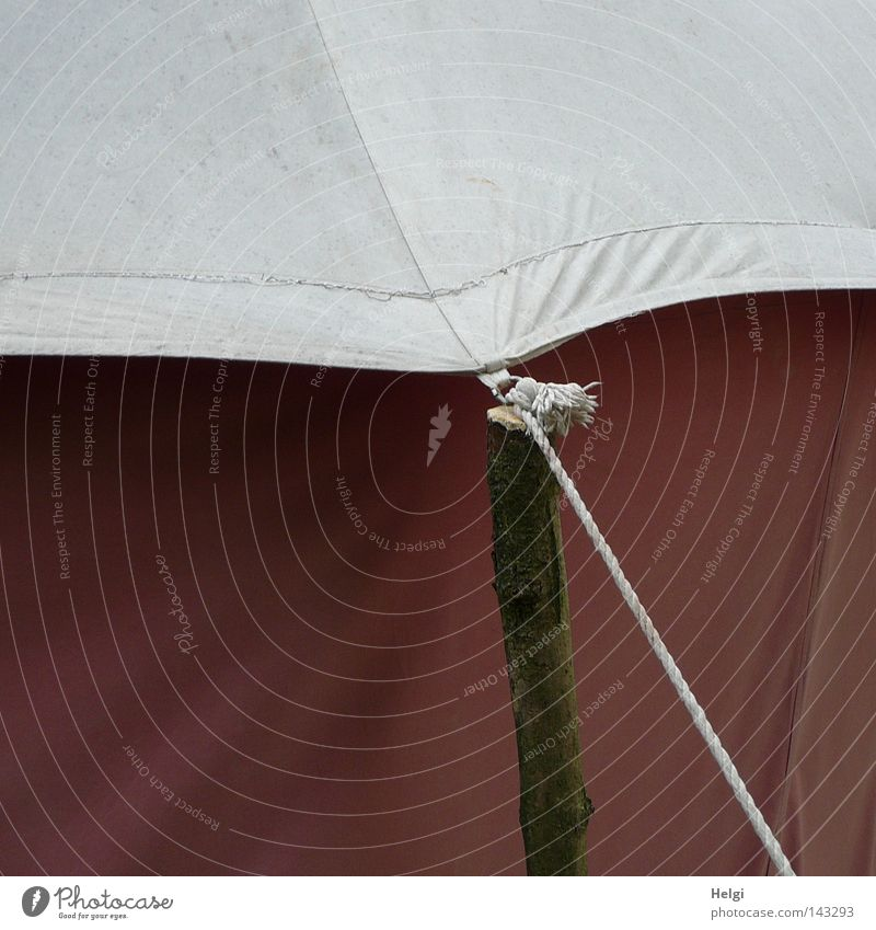 angebunden... Natur alt weiß Freiheit Holz grau braun Seil verrückt Häusliches Leben Stoff Schnur obskur Falte historisch