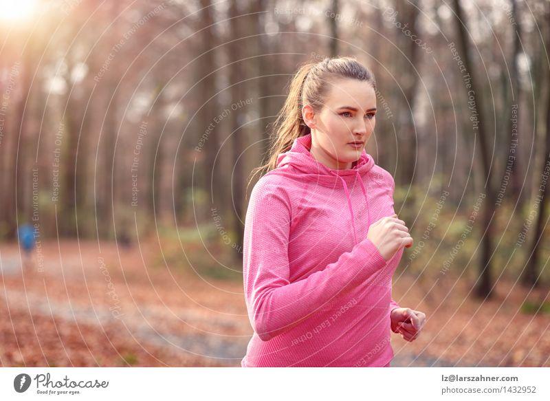 Junge Frau des hübschen Sitzes, die im Waldland rüttelt Mensch Natur Jugendliche 18-30 Jahre Gesicht Erwachsene Herbst Sport Lifestyle frisch Körper Fitness