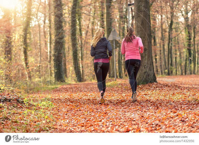 Zwei passen die junge Frau zusammen, die zusammen rüttelt Mensch Jugendliche Blatt 18-30 Jahre Wald Gesicht Erwachsene Herbst sprechen Sport Glück Lifestyle