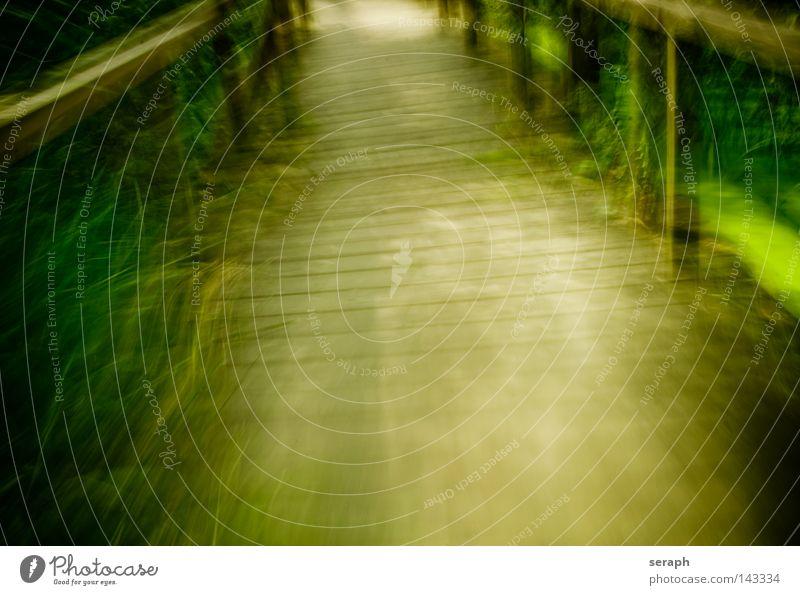 Green Motion Steg abstrakt Bewegungsunschärfe Unschärfe Hintergrundbild Biotop Konstruktion Fluchtpunkt Geschwindigkeit weich Brückenbau diffus Licht Durchgang