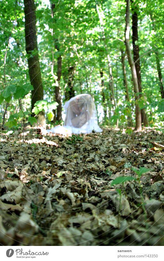 ein weiblein saß im walde, ganz still und stumm... Frau Mensch Natur Baum grün Sommer Blatt Wald Leben nackt Wärme authentisch Insekt Physik zart