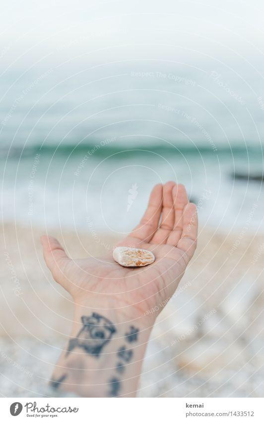 ...this stone to you... Lifestyle Ferien & Urlaub & Reisen Strand Meer Wellen Hand Finger Handfläche 1 Mensch Tattoo Umwelt Natur Sonnenlicht Schönes Wetter