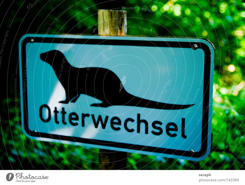 Otter Crossing Natur Pflanze Tier Schilder & Markierungen Schriftzeichen Information Buchstaben Zeichen obskur Hinweisschild Symbole & Metaphern Typographie