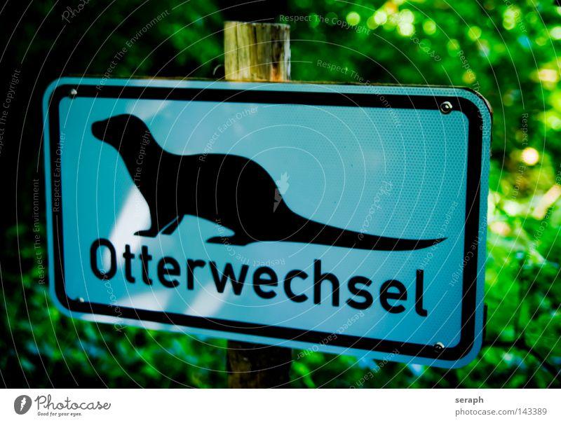 Otter Crossing Piktogramm Symbole & Metaphern Straßennamenschild Verkehrsschild Information Hinweisschild Rechteck graphisch Buchstaben Typographie Blechschild