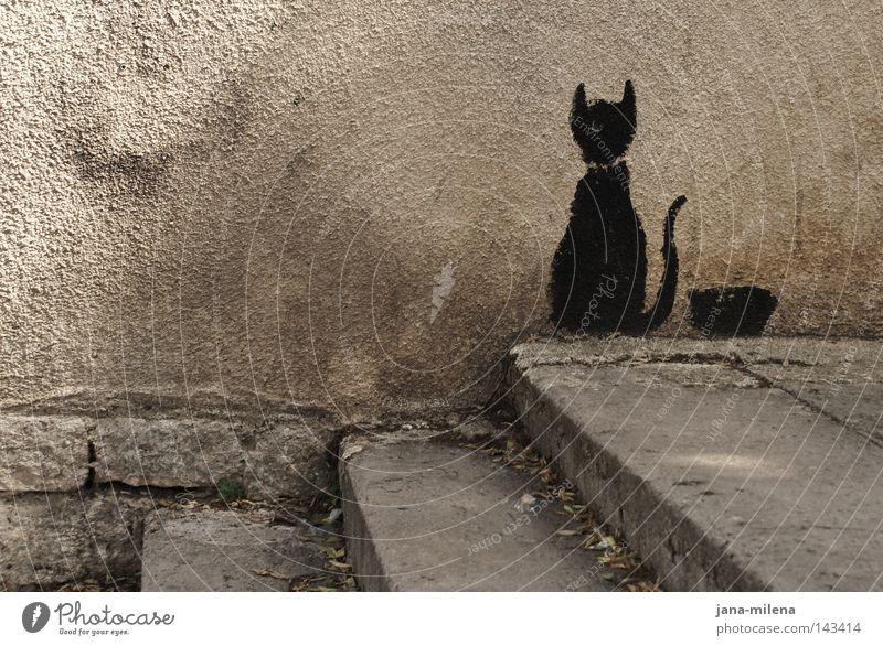 Wandkatze. Haus Putz verputzt Katze Tier streichen bemalt schwarz Fressnapf Ernährung Fressen Futter Treppe Mauer Straßenkunst Hinterhof grau Schwanz Einsamkeit