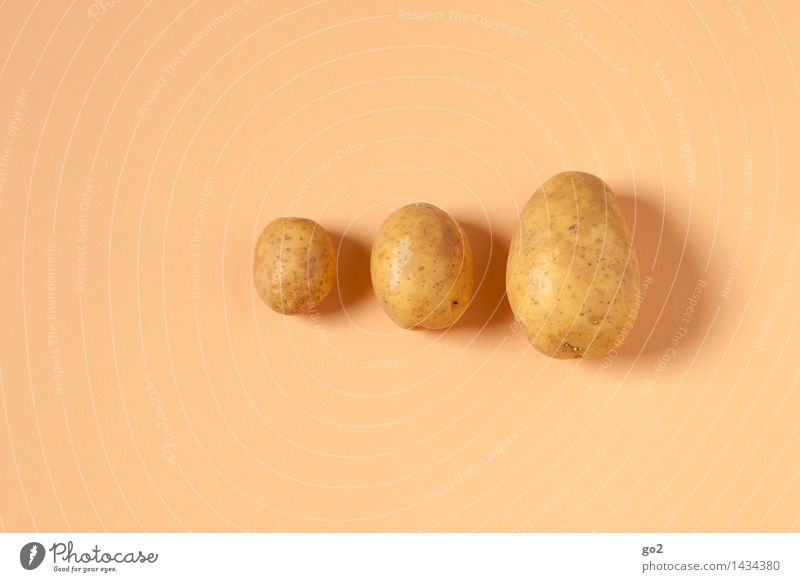 3 Kartoffeln Lebensmittel Gemüse Kartoffelgerichte Kartoffelernte Kartoffelschale Ernährung Essen Mittagessen Bioprodukte Vegetarische Ernährung Landwirtschaft