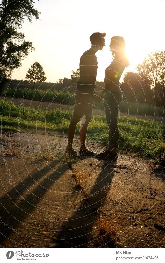 keep calm Junge Frau Jugendliche Junger Mann Partner 2 Mensch Umwelt Natur Schönes Wetter Pflanze Baum Gras stehen Glück Lebensfreude Geborgenheit