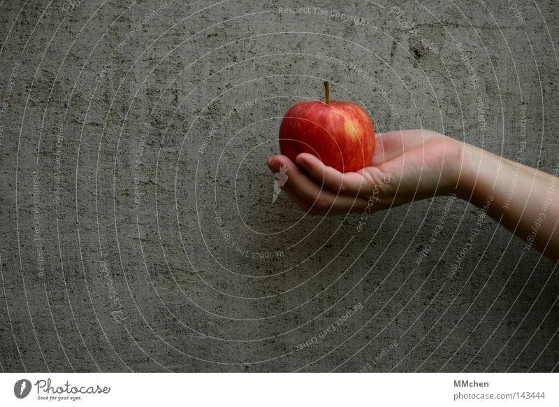 An apple a day.... Apfel Hand Wand Beton Frucht Diät Gesundheit rot knackig saftig lecker Appetit & Hunger Schneewittchen Küche Adam und Eva