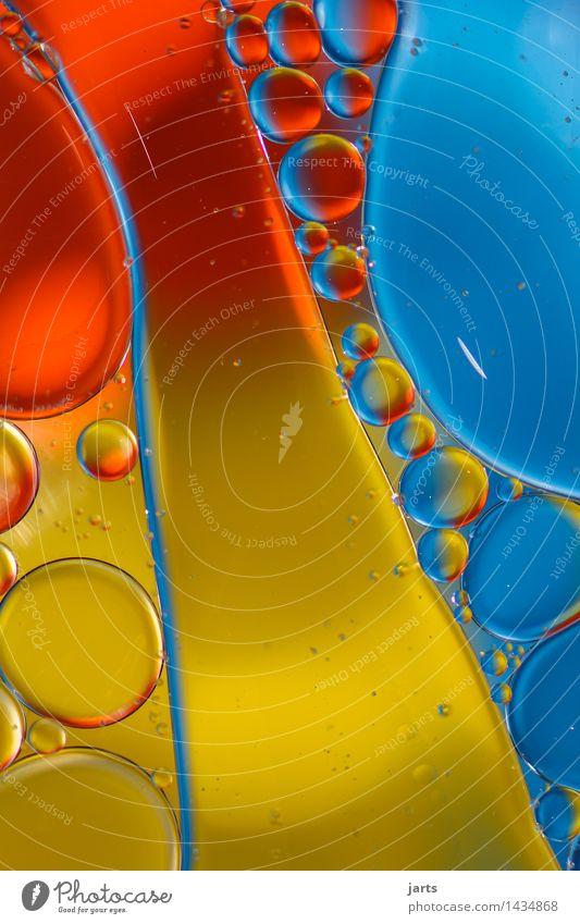 liquid colour #3 Öl Wasser Schwimmen & Baden außergewöhnlich frisch hell nass positiv blau gelb rot Farbe Kreativität Blase Kreis Farbfoto mehrfarbig