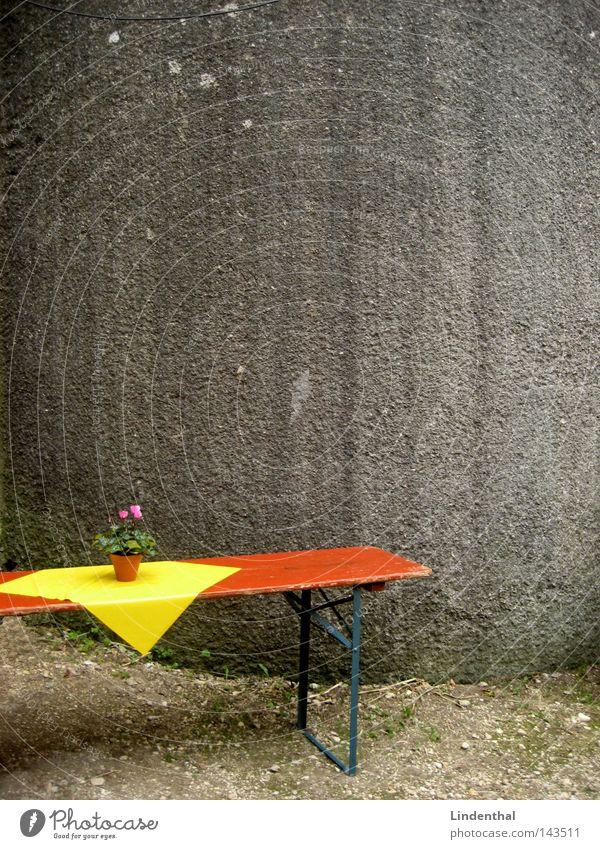 Tischlein deck Dich rot Blume gelb Wand grau orange Feste & Feiern Dekoration & Verzierung Dienstleistungsgewerbe kariert Tuch Stuttgart Biertische
